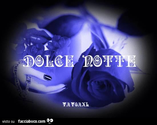 Dolce Notte Rosa Blu Facciabucocom