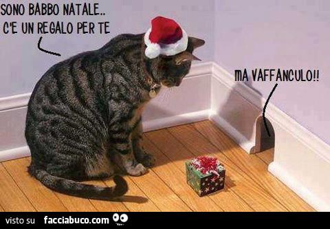 Sono Babbo Natale, c'è un regalo per te. Ma vaffanculo